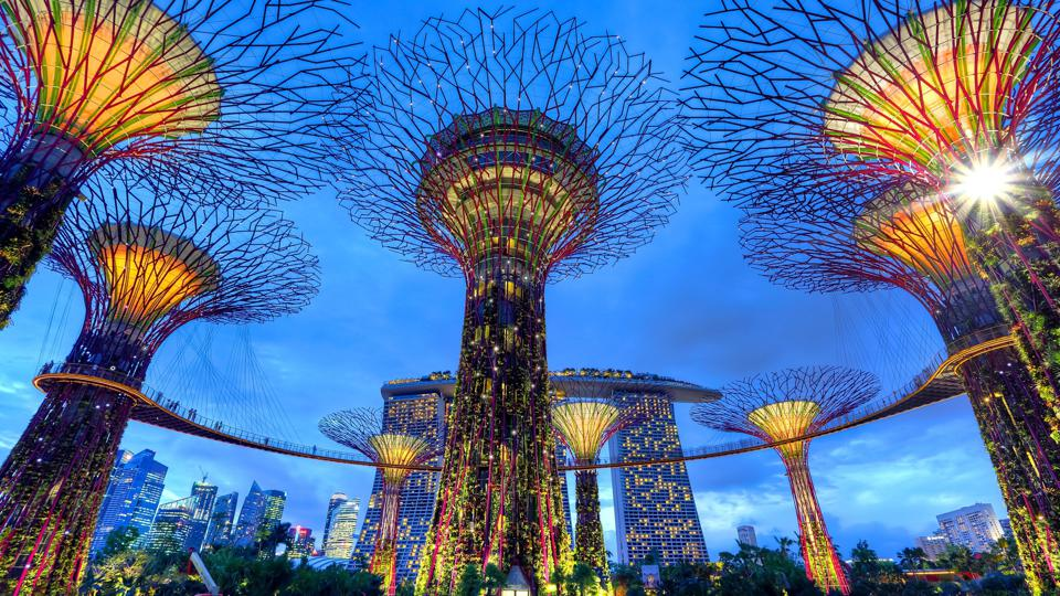 Futuristic garden in Singapore looking at hotel