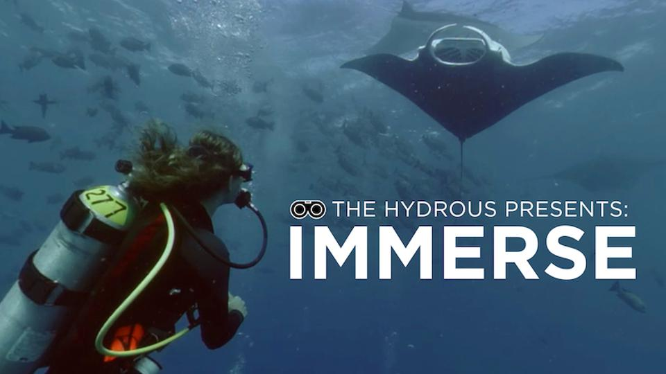 Immerse cover picture of a diver under a manta ray