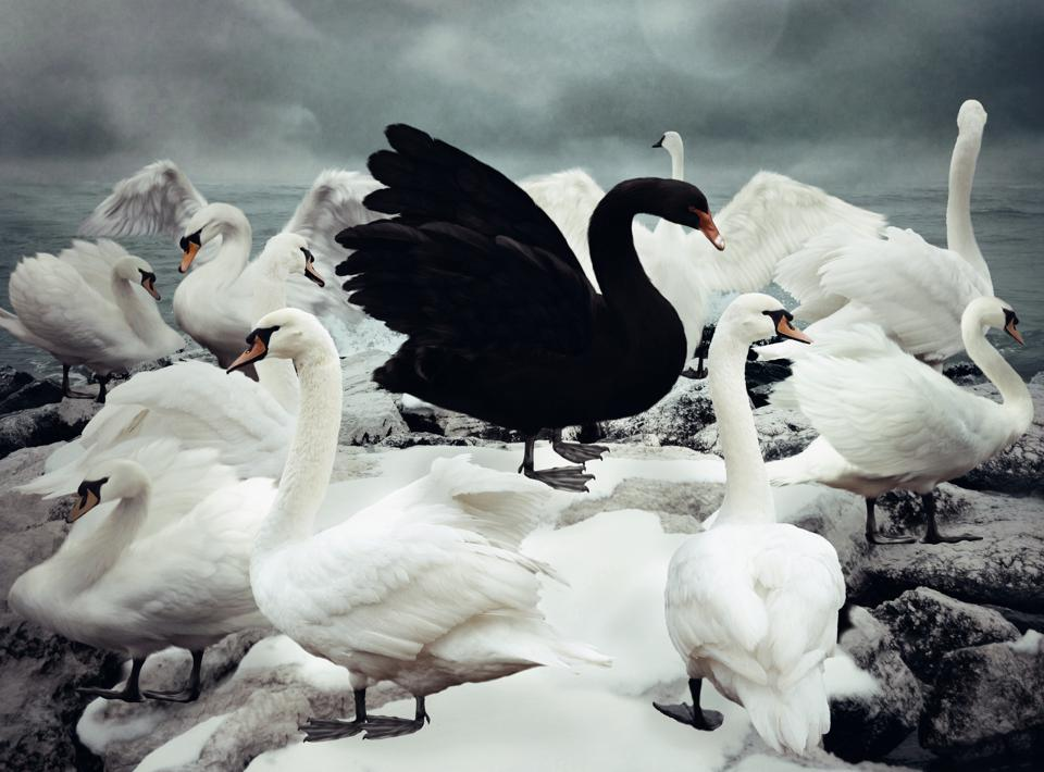 Risk Management And Black Swan Events