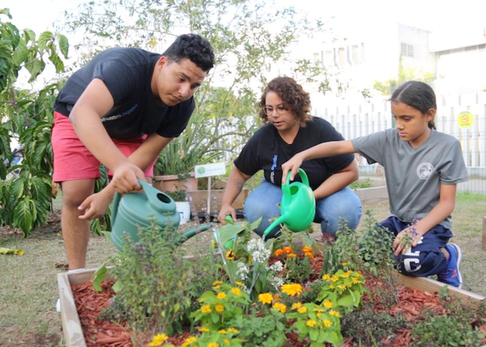Money raised by children Trick-or-Treating for UNICEF after Hurricane Maria helped create community gardens at Boys & Girls Clubs of Puerto Rico. The gardens help beautify the clubs and give children an opportunity for hands-on learning.
