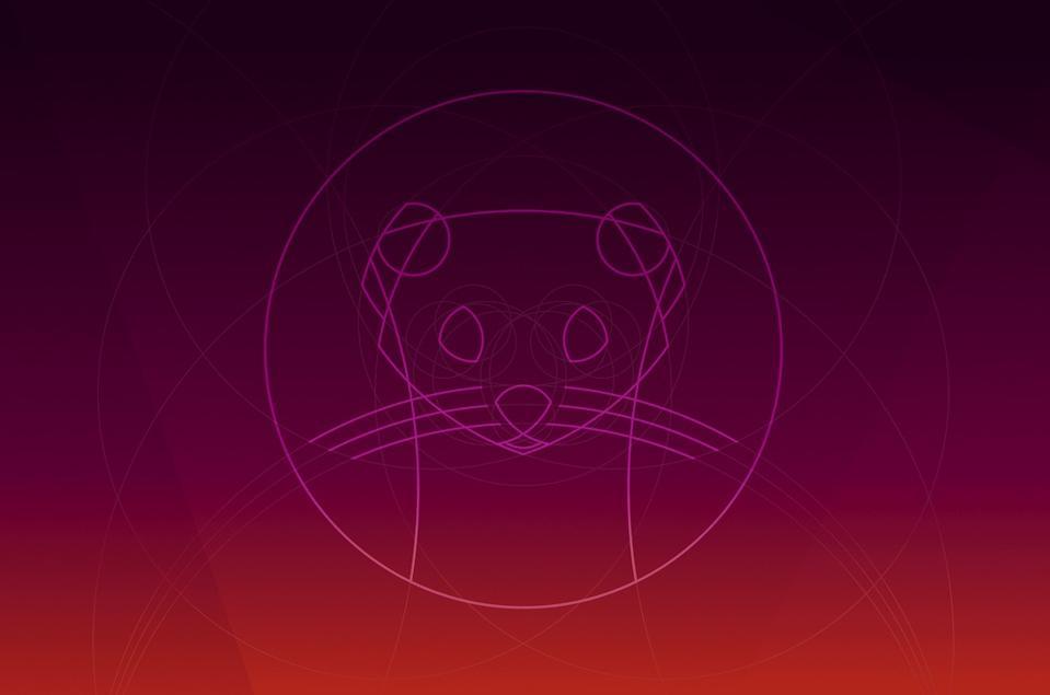 Ubuntu 19.10 ″Eoan Ermine″ wallpaper