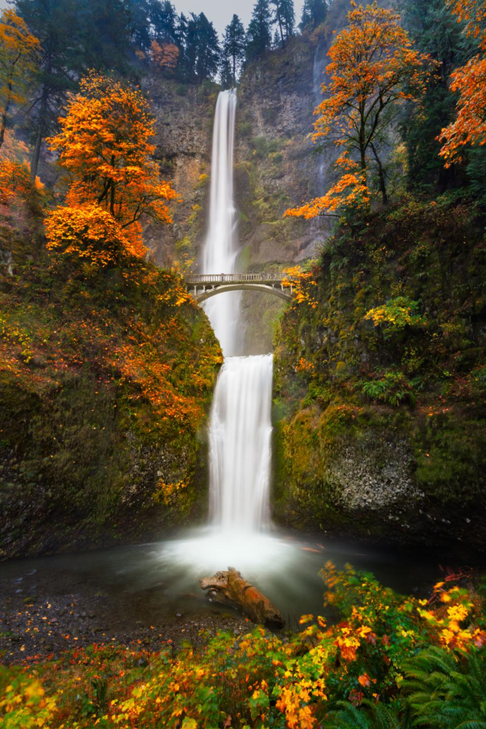 Oregon's Multnomah Falls outside of Portland are awe-inspiring. And quite photographable.