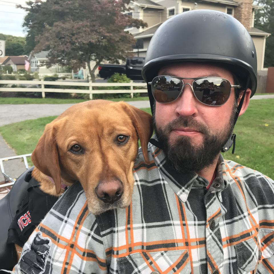 The new film ″To Be Of Service″ is an inspirational look at the bond between service dogs and returning U.S. veterans struggling with PTSD