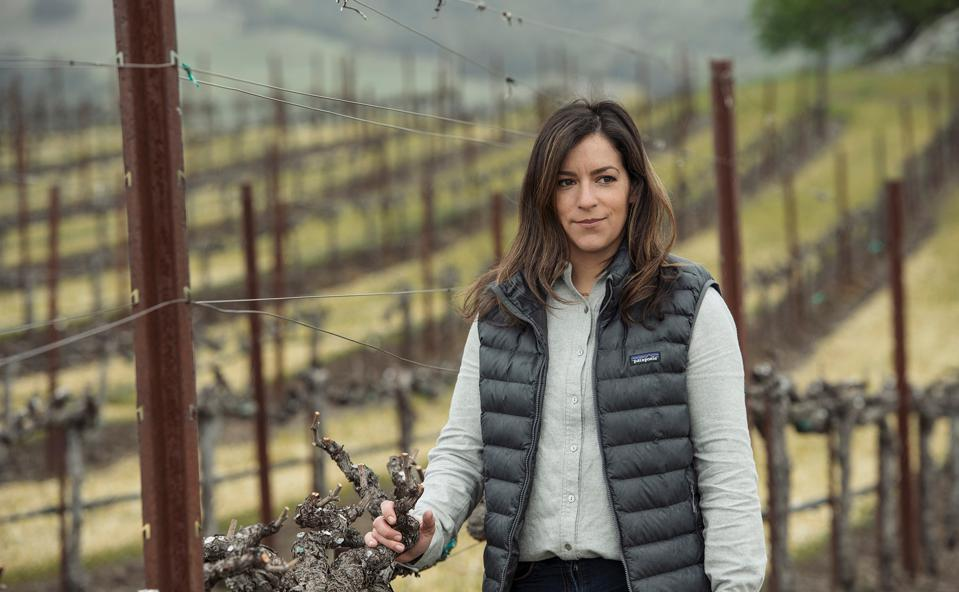 generational winemaking, Sonoma County, wine country
