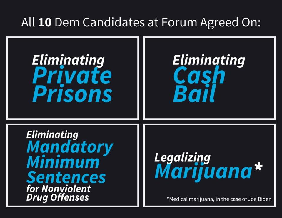 All 10 democratic candidates agreed on...