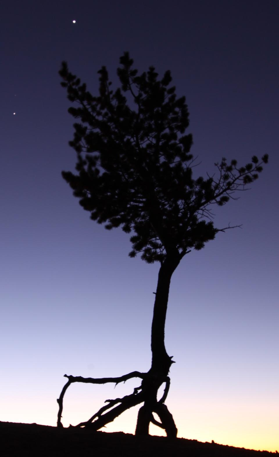 Venus and Jupiter from Bryce Canyon.