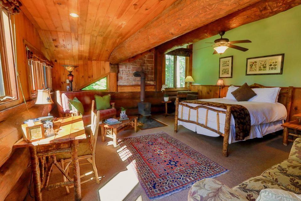 A treehouse junior suite