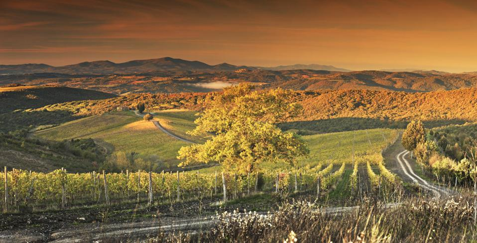 With Wine, Truffles And So Much More, Tuscany Isn't Just For Summer At Rosewood Castiglion Del Bosco