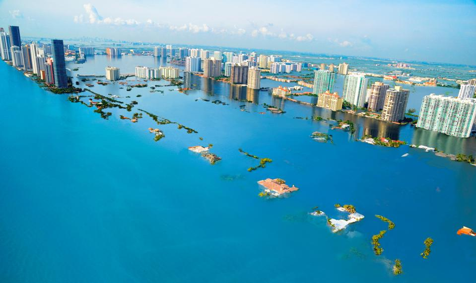 Miami Beach in 2050