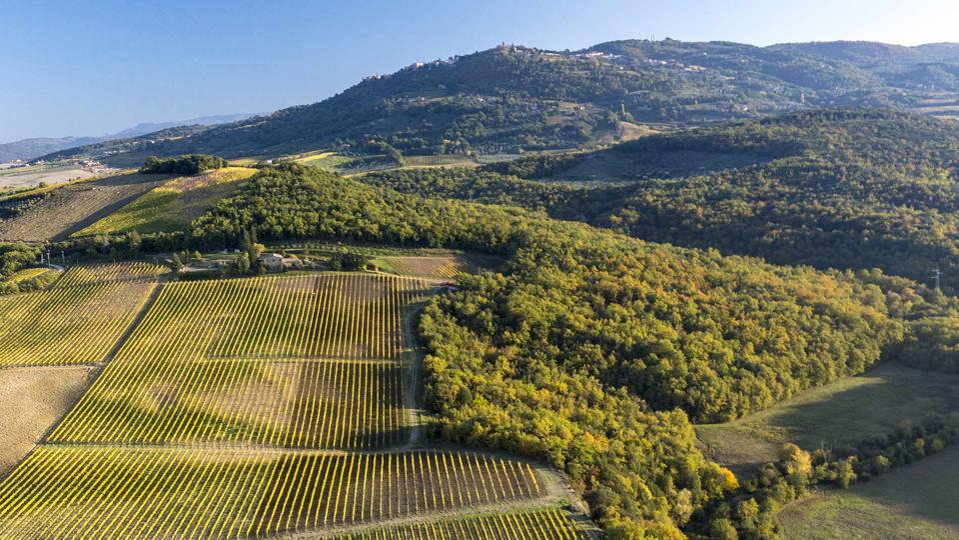 Montosoli Hill