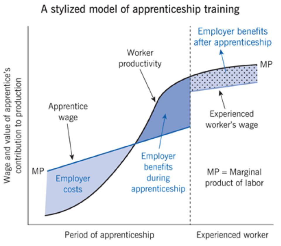 A stylized model of Apprenticeship Training