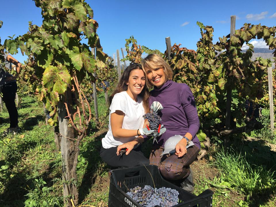 Co-owner Valérie Costanzo (right) and daughter Serena during harvest