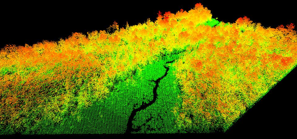 A LiDAR image of a swamp near Manoa, in Rondônia State, Brazil; one of Pachama's reforestation projects in South America. LiDAR images feed into machine learning technology to help estimate carbon sequestration forests