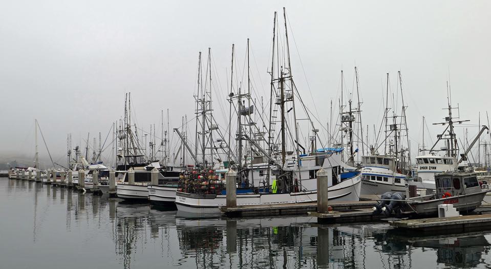 Bodega Bay, California