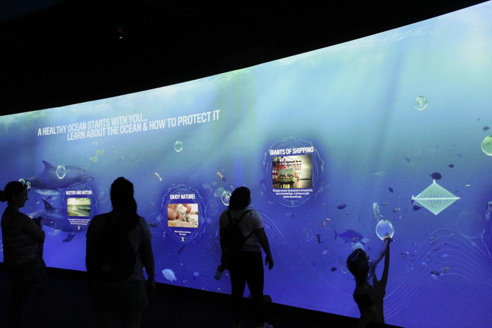 An interactive exhibit on ocean conservation at Aquarium of the Pacific