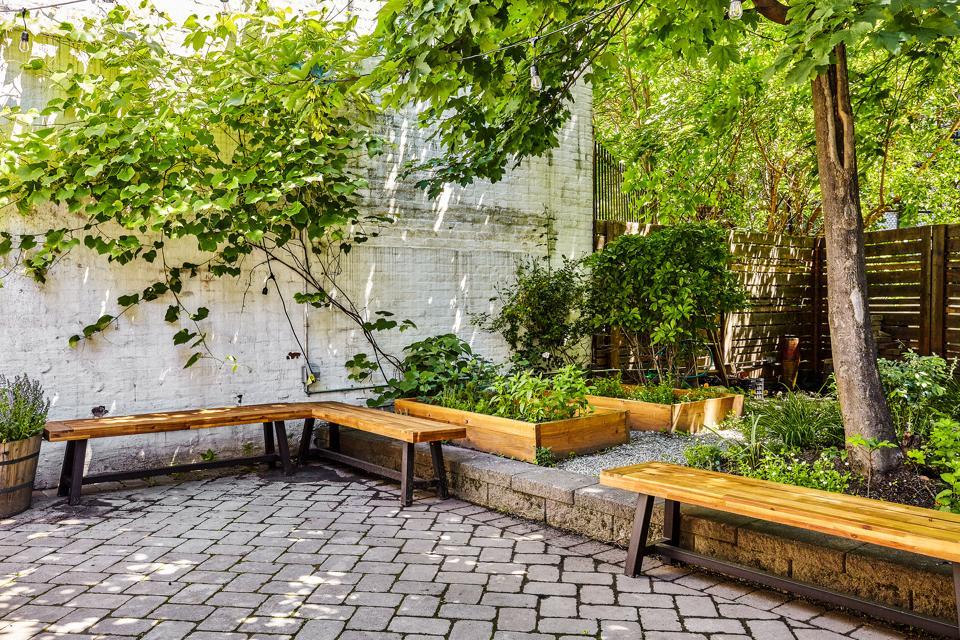 The backyard at Oxalis.