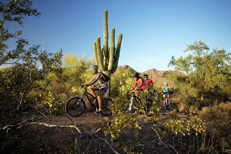 REI Arizona Mountain Biking