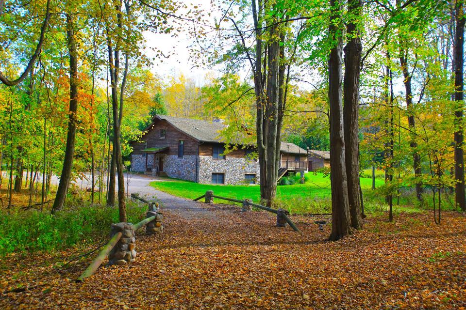 Bear Camp at Savannah Dhu