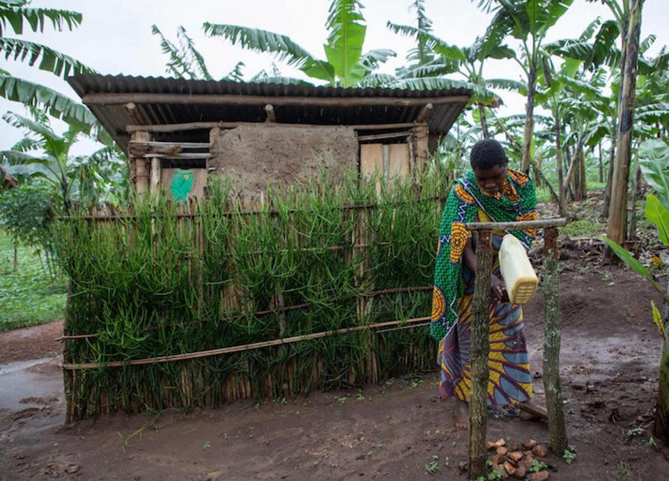 Josephine Mukonyezi, a 26-year-old mother of six, washes her hands at the tippy tap outside her family's latrine in Mutwe Village, Kamwenge district, Uganda.