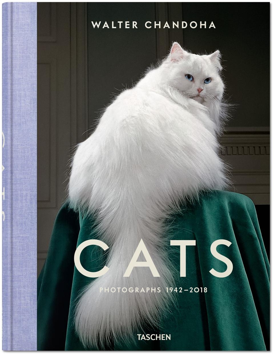 ″Cats: Photographs 1942-2018″