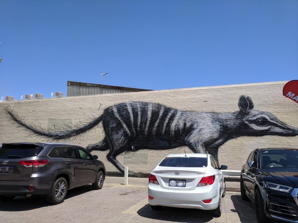 25-meter long numbat, one of Australia's endangered species, mural by ROA