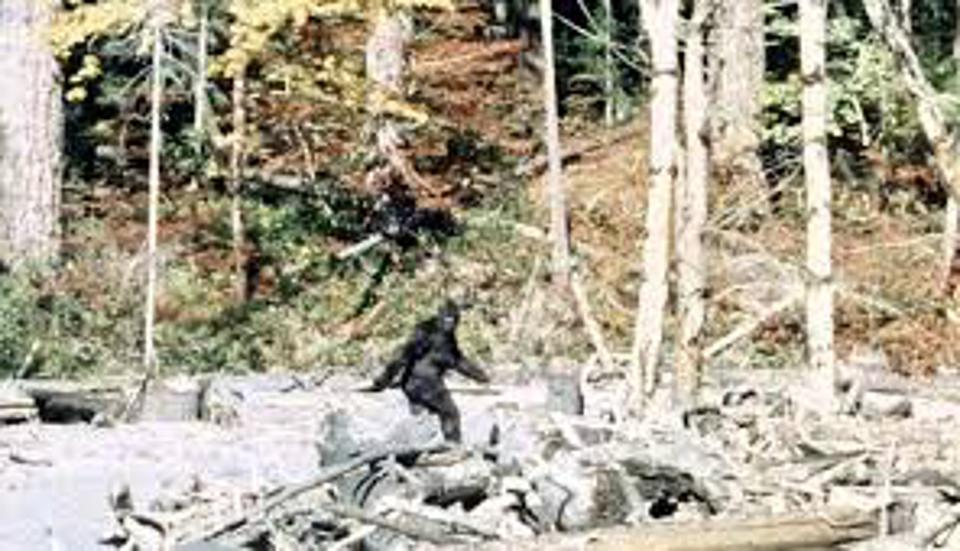 Bigfoot video shot by Roger Patterson and Bob Gimlin