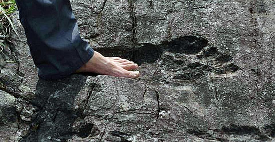 Footprint found in China