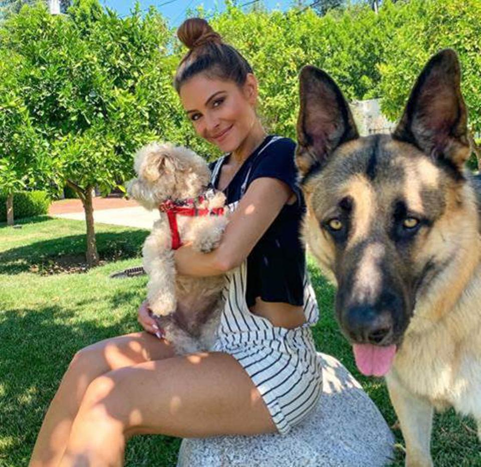 Celebrity Health: Maria Menounos and her dogs.