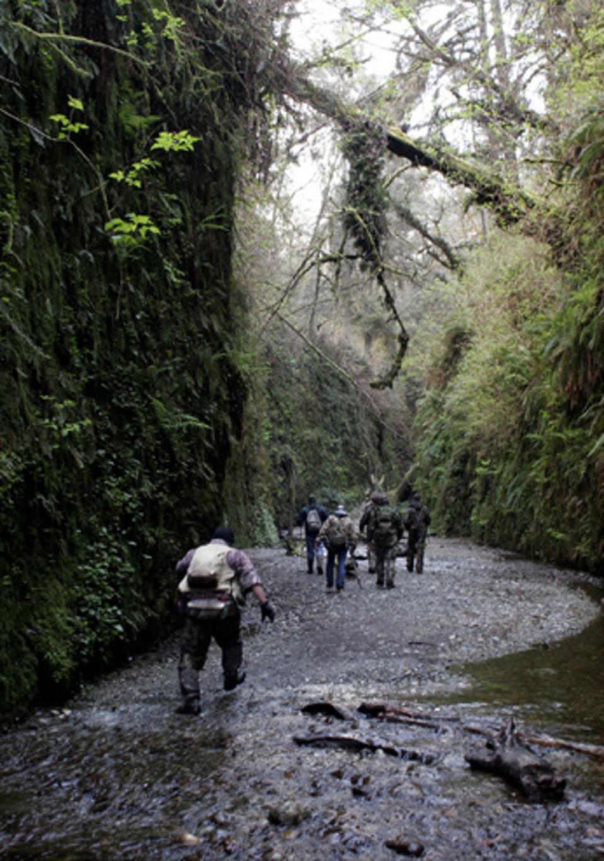 Bigfoot Field Researchers Organization expedition