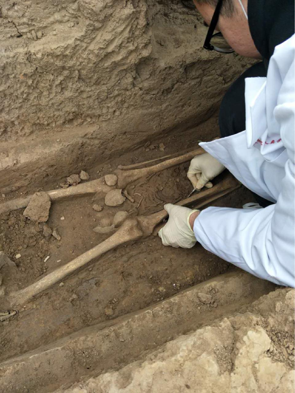 Infant remains from Huigou site, Henan Province, China