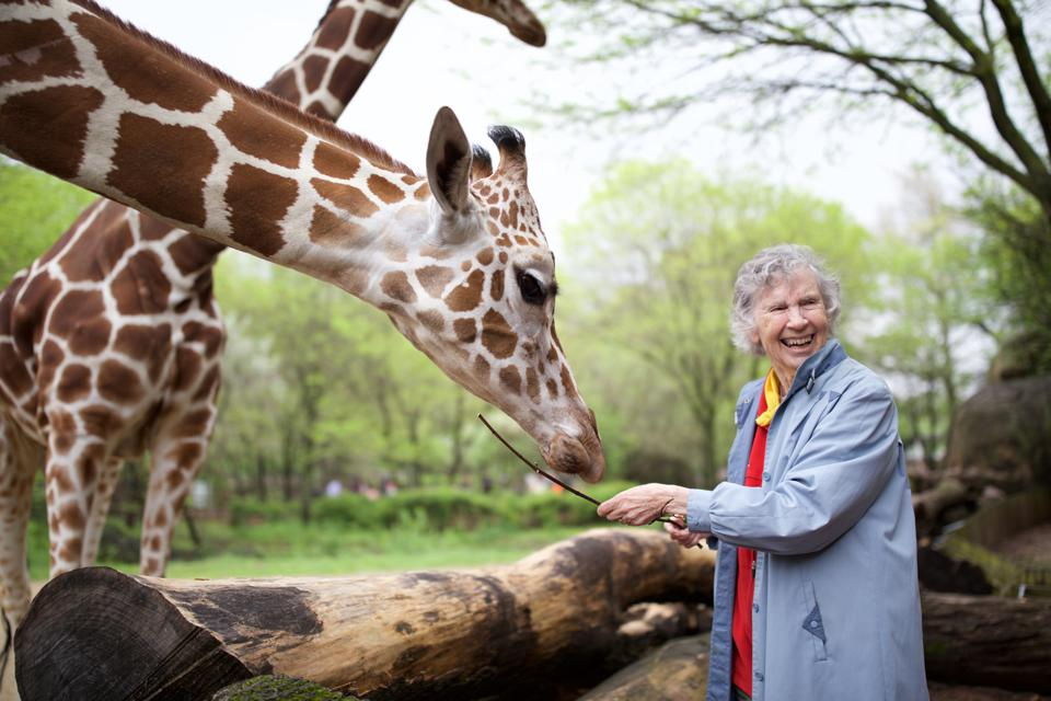 Anne Innis Dagg, The Woman Who Loved Giraffes
