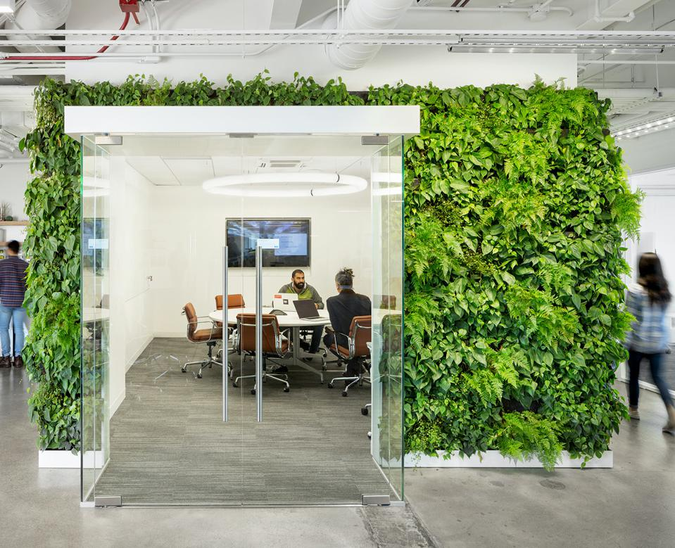 Solar Mosaic's office in Oakland, California. Architect: Made to Matter. Living Wall by Habitat Horticulture.
