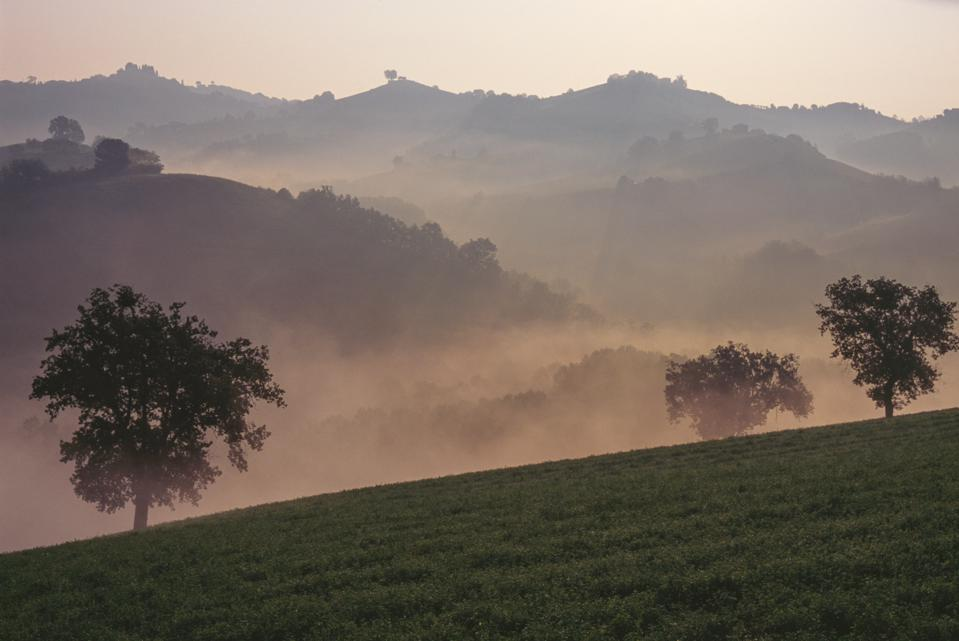 Misty morning in the Maremma countryside of Tuscany
