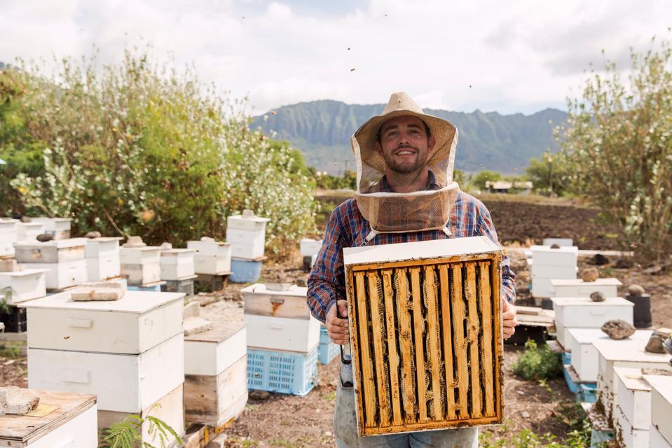 Co-founder of Wicked Hi Slush, Brandon Slowey, beekeeping at Tolentino Honey Co. on Oʻahu