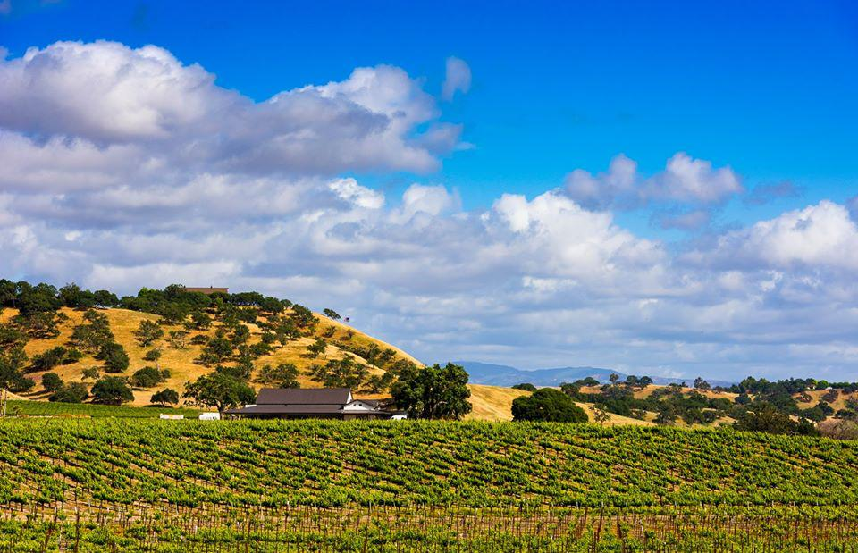 View of Cass Winery with Hills and Vineyards Surrounding It