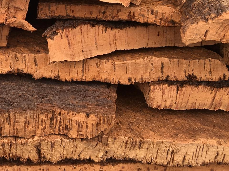 Drying slabs of raw cork bark