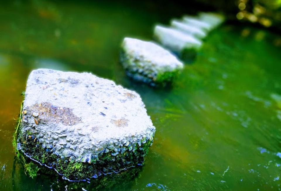 A set of stepping stones in a river leading away in soft focus to convey a sense of depth