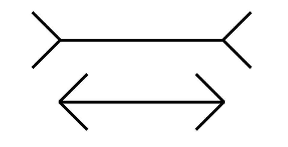 Two equal-length lines with arrows; one has arrows pointing inward; the other has arrows pointing outward