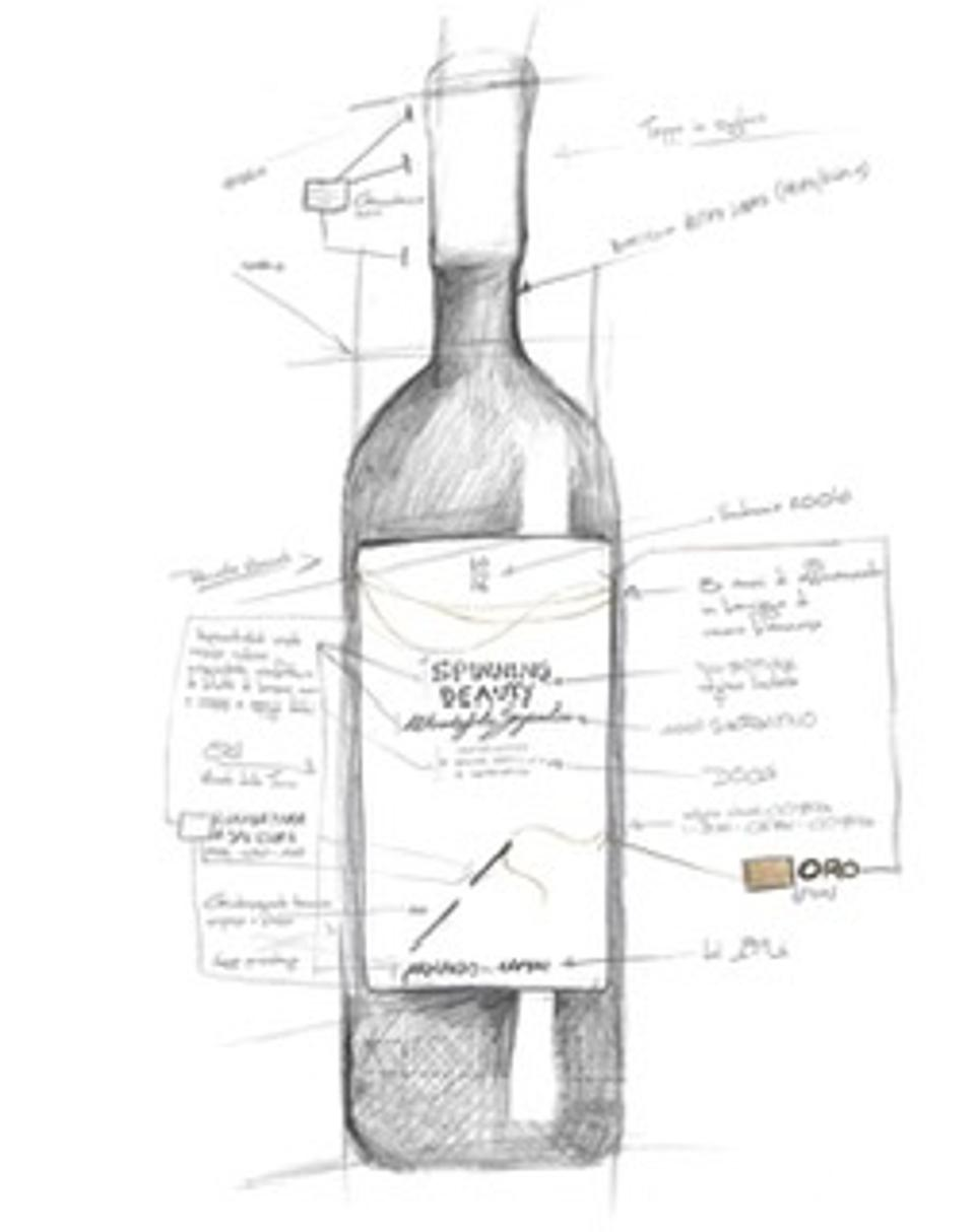 A drawing of a bottle of Spinning Beauty wine