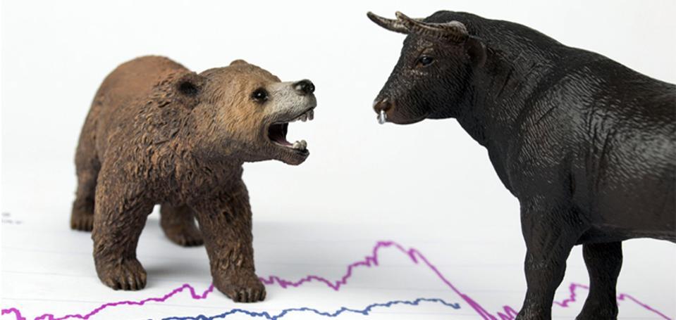 sentiment survey bull bear