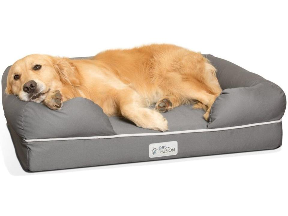 The Best Dog Beds For Home, Travel And More