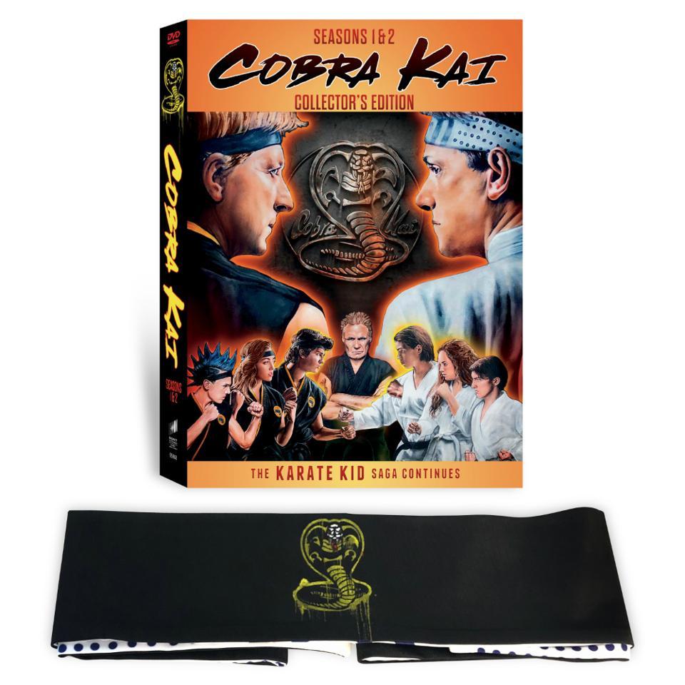 Cobra kai the karate kid johnny lawrence