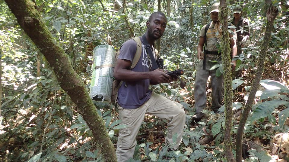 Nigerian researcher Charles Emogor doing field work in national park in Nigeria.