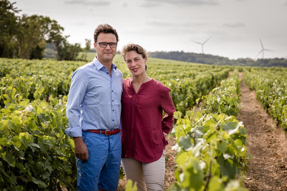 Chablis, Burgundy wine, women in wine
