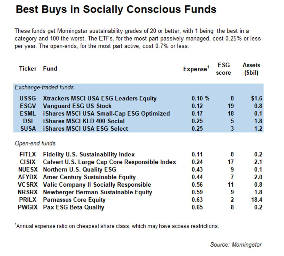 Best buys in socially conscious funds