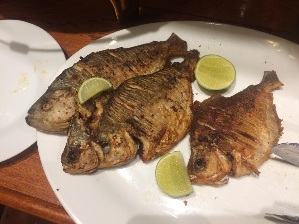Fried piranha back on the Tucano.