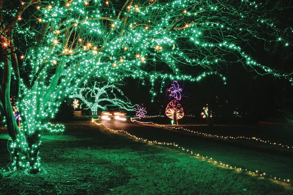 Norfolk Botanical Garden's Garden of Lights