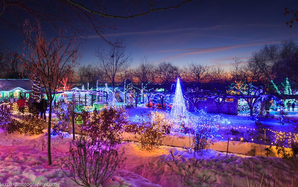 Winter Garden aGlow at Idaho Botanical Garden