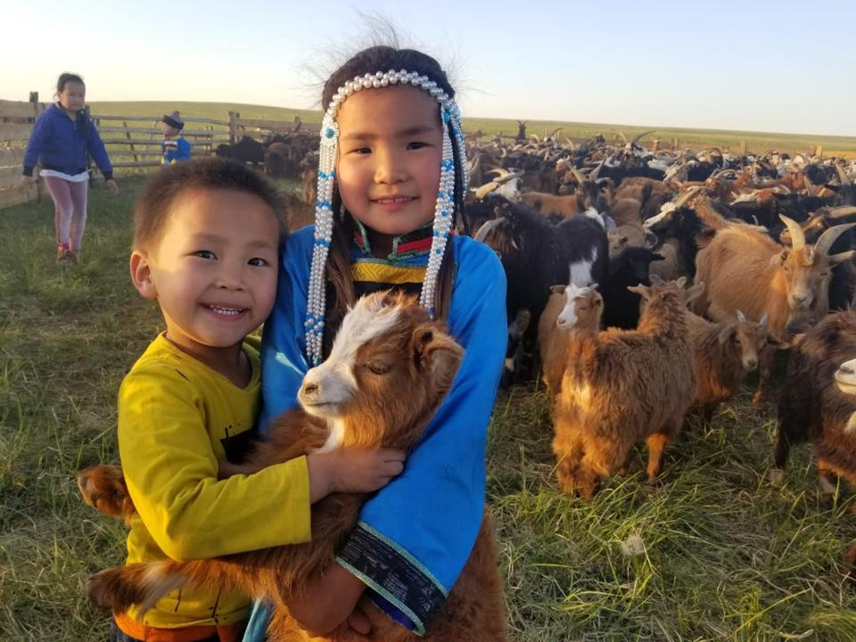Two young Mongolian children play with the goats that provide cashmere.