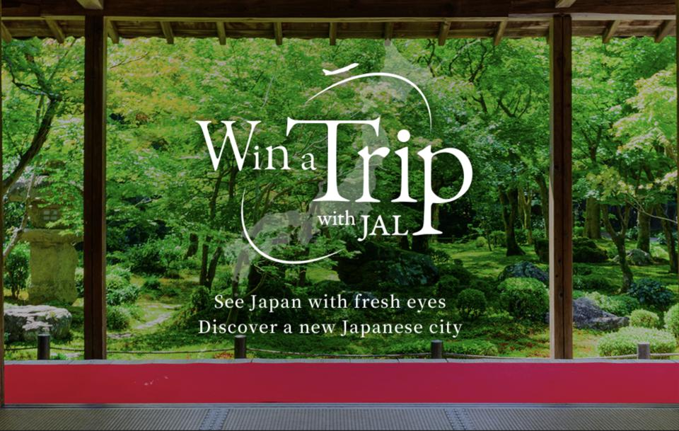 Image result for 50000 free tickets to japan